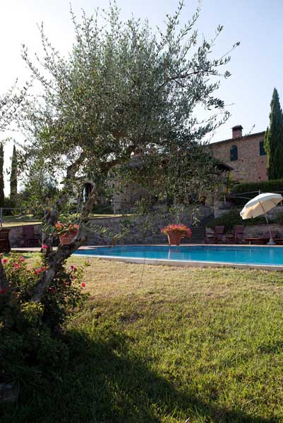 wineestate-apartments-swimmingpool-childrenplayground-barbecue-privateparking-tuscanyhills-vacationtuscany-volterra.jpg