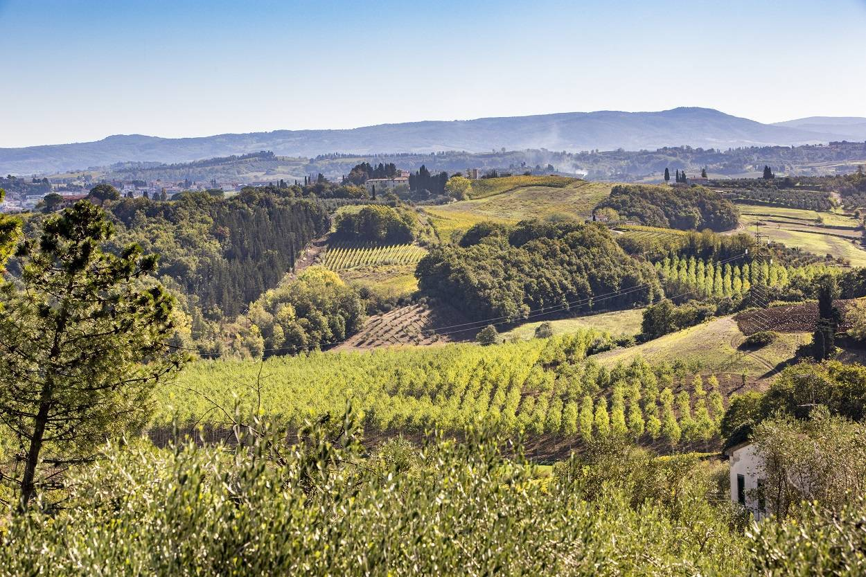 landscape-nature-tuscan-view-summer-holiday-in-italy.jpg