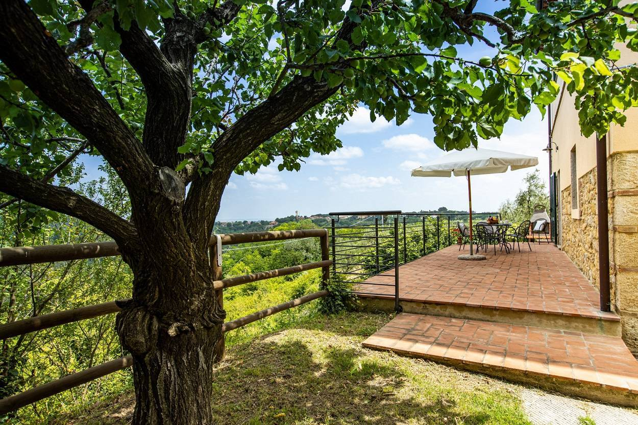 sellf-contained-cottage-with-private-outdoor-terrace.jpg